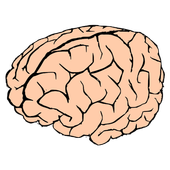 Memory Puzzle, Two Player Game icon