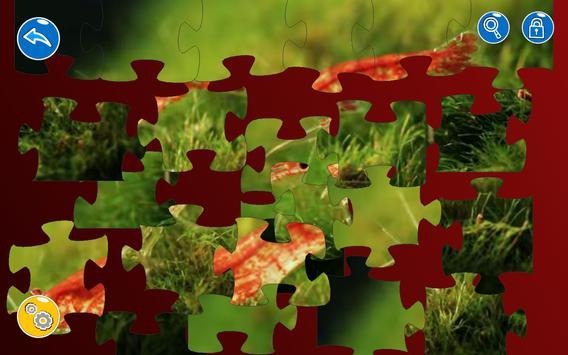 Video Jigsaw Puzzle screenshot 3