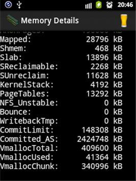Memory Details apk screenshot