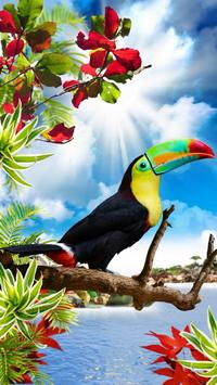 Vogels live wallpaper gratis screenshot 6