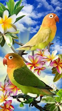 Vogels live wallpaper gratis screenshot 8