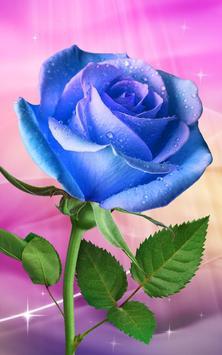 Rose. Magic Touch Flowers screenshot 1