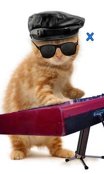 Talking, Dancing Cat. screenshot 2