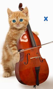 Talking, Dancing Cat. screenshot 4