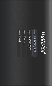 Matches screenshot 6