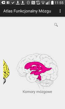 Atlas Funkcjonalny Mózgu apk screenshot