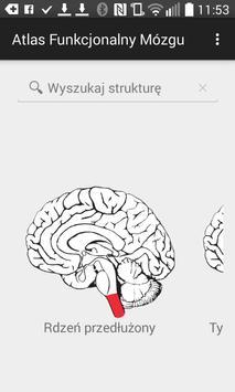 Atlas Funkcjonalny Mózgu poster