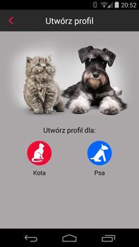 Modern Pet poster