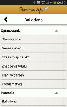 Streszczenia.pl screenshot 2