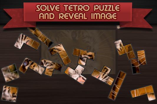 Tetro Puzzle poster