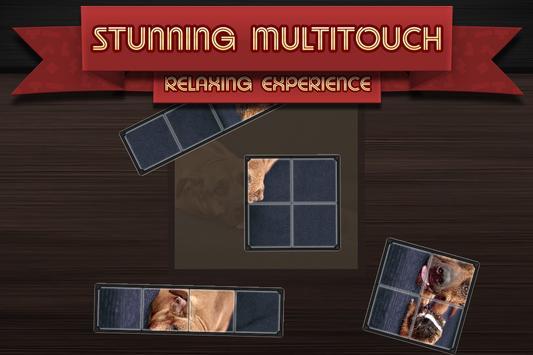 Tetro Puzzle screenshot 1