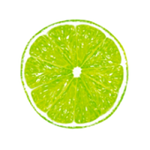 Slims icon