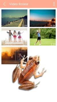 Frog on Phone Prank poster