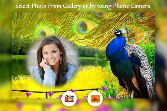 Peacock photo frame apk screenshot