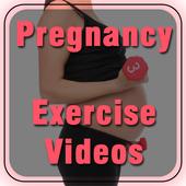 Pregnancy Exercise Videos icon