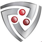 PS SECURITY icon
