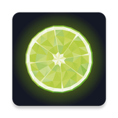 LIME Detailing Center icon