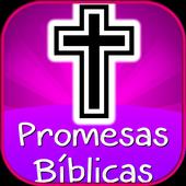 Promesas Bíblicas de Dios icon
