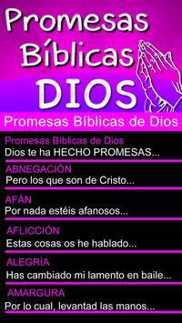 Promesas Bíblicas de Dios screenshot 6