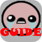 Guide for BOI icon