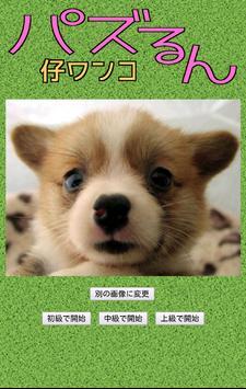 パズるん 仔ワンコ poster