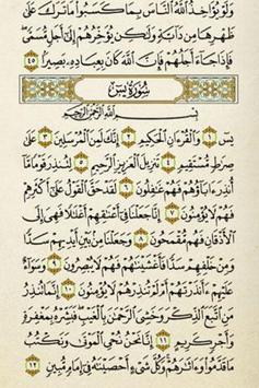 Quran Kareem apk screenshot