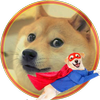 Doge fighter icon