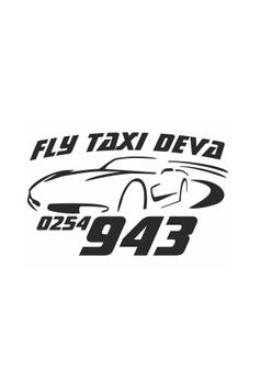 TAXI FLY Driver poster