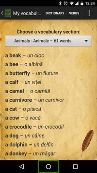 English Romanian English Dictionary apk screenshot