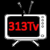 313TV icon