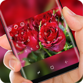 Love Red Rose Keyboard Romantic Theme icon