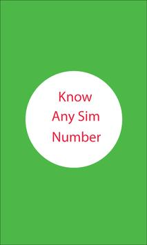 Know Any Sim Number poster