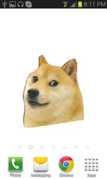 such doge lwpp very white poster