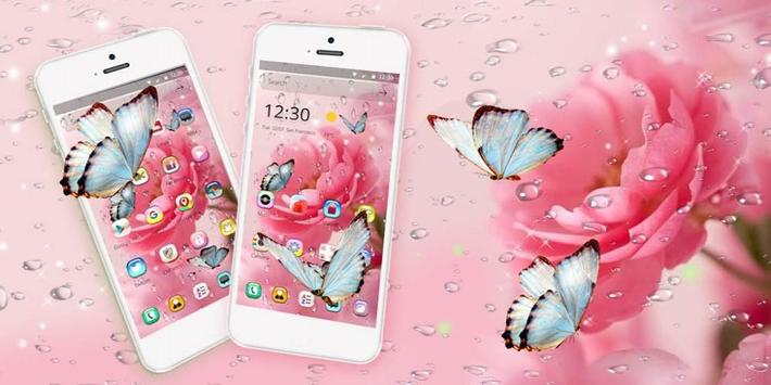 Rose Water Drop Wallpaper apk screenshot