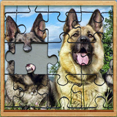 german shepherd dogs Jigsaw Puzzle Game icon