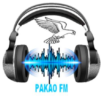 Radio Pakao FM en Live poster