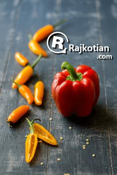 Rajkotian - Food Delivery poster