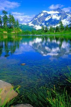Beautiful Lake Live wallpaper apk screenshot