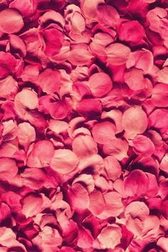 Petals Live Wallpaper apk screenshot