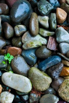Pebbles Live Wallpaper screenshot 2