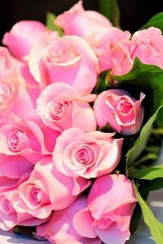 Pink Rose Live Wallpaper screenshot 3