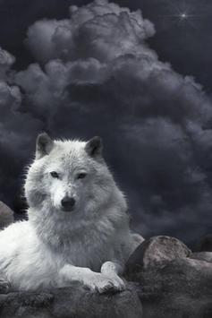 Wolf Live Wallpaper apk screenshot