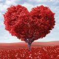 Heart Tree Love