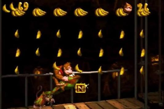 New Donkey Kong Country Tips poster