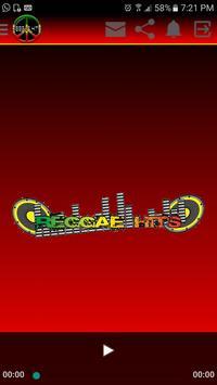 Reggaehitss poster