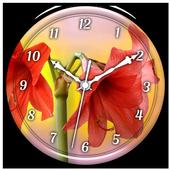 Amaryllis Clock Live Wallpaper icon