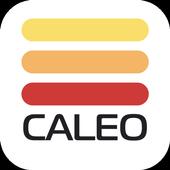 Центр обучения CALEO icon
