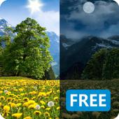 Dandelions Flowers True 3D Live Wallpaper FREE LWP icon