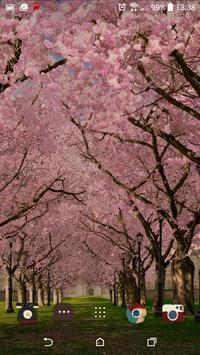 春の桜花の無料3D桜 春 の 桜 花 の 無 料 3D 桜 Cherry blossom FREE スクリーンショット 3