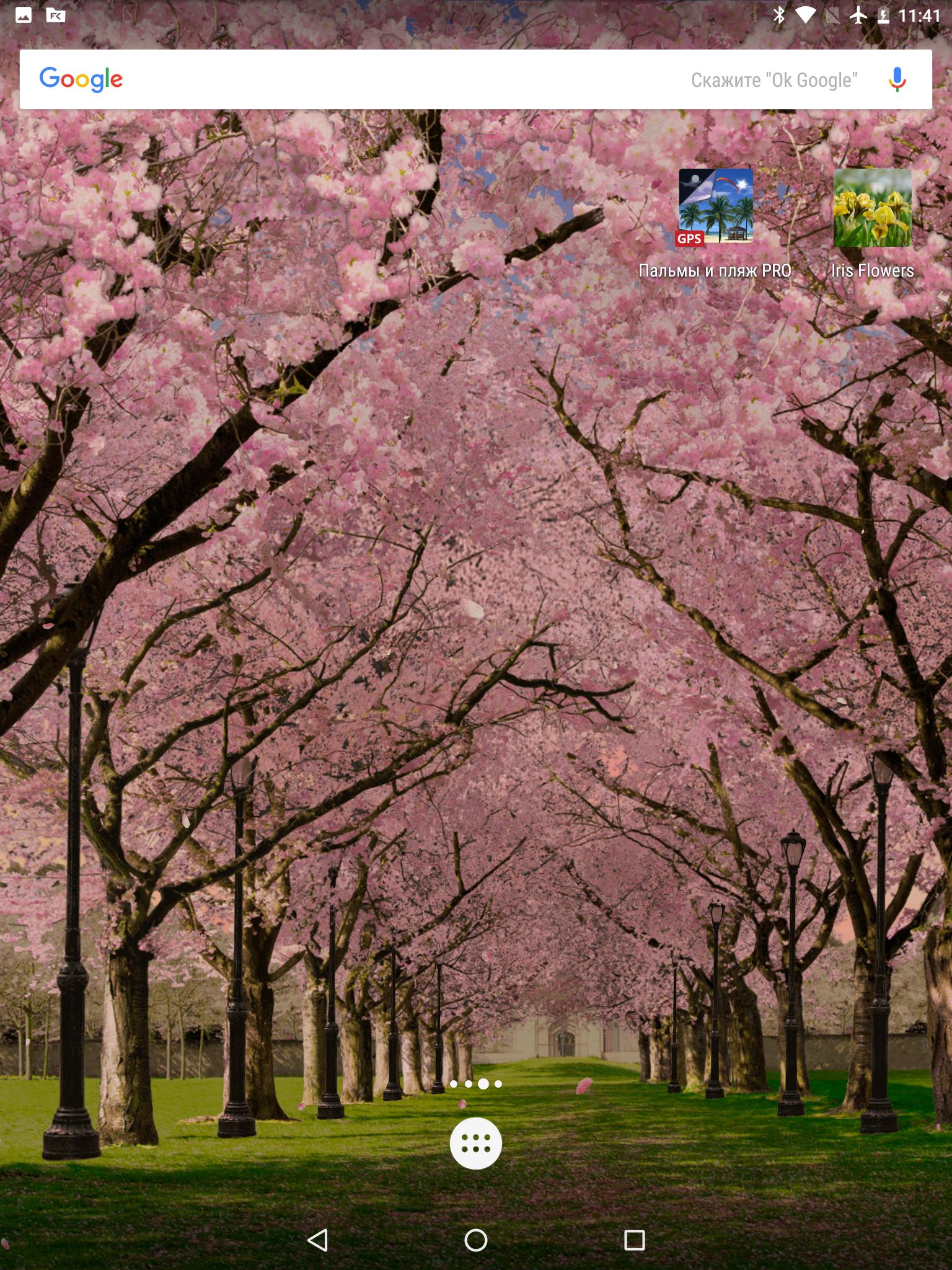 Spring Cherry Blossom Live Wallpaper for Android - APK ...
